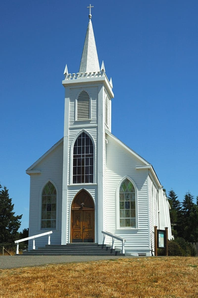 Descendants of the same birds in the Hitchcock horror movie fly around the same church in Bodega Bay - but you're not likely to get attacked.