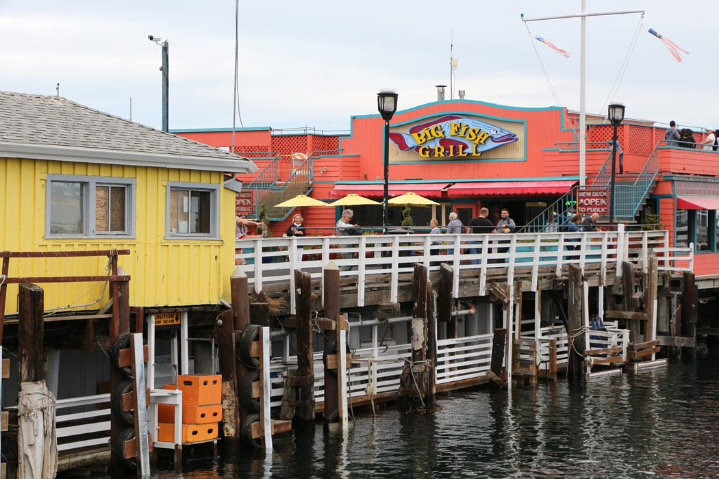 Discover artists' galleries, boutique shops and 25+ restaurants along Cannery Row in Monterey.