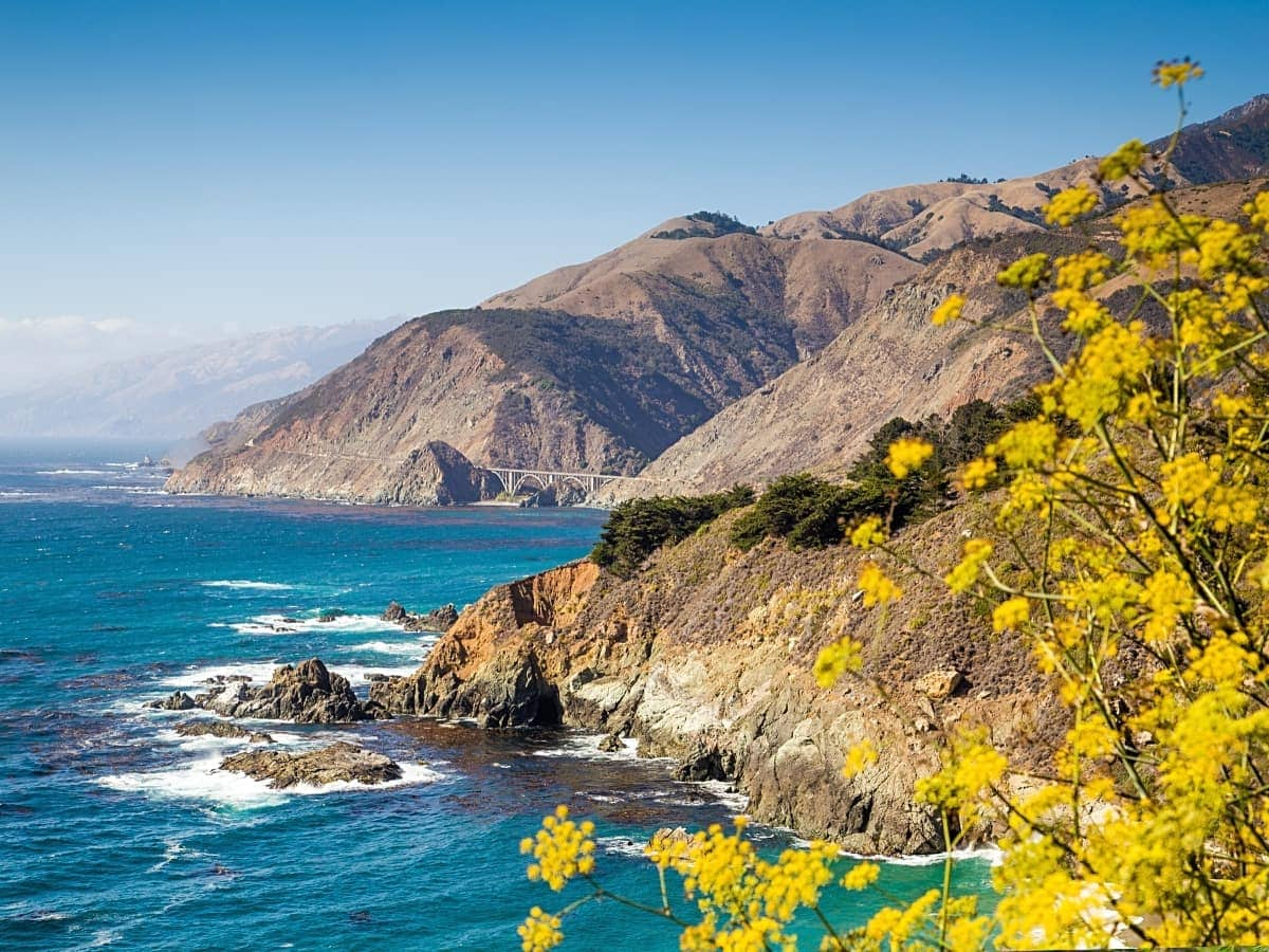 You'll see plenty of gorgeous views like this when driving up the Northern California coast.