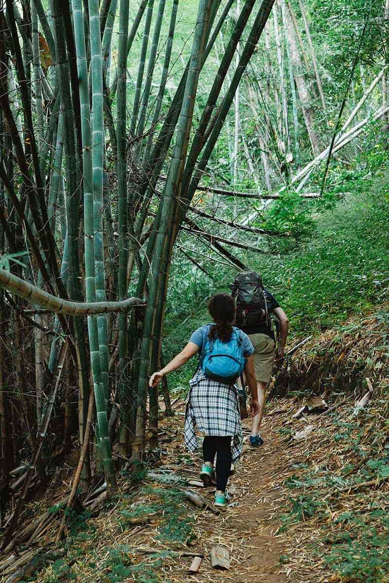 Hiking the Pipiwai Trail is one of the best things to do on Maui for adventure-loving couples.