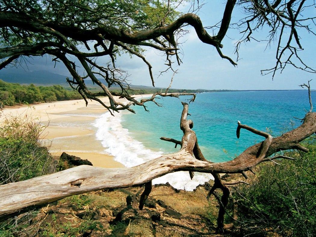 Big, beautiful, wild - that's Makena Beach on Maui.