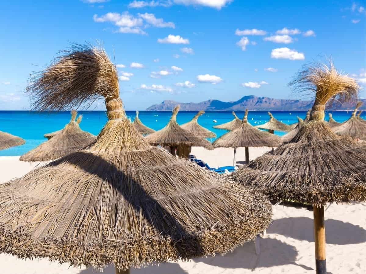 On Alcudia Bay, Can Picafort has clean white sand and beach chairs and umbrellas for rent.